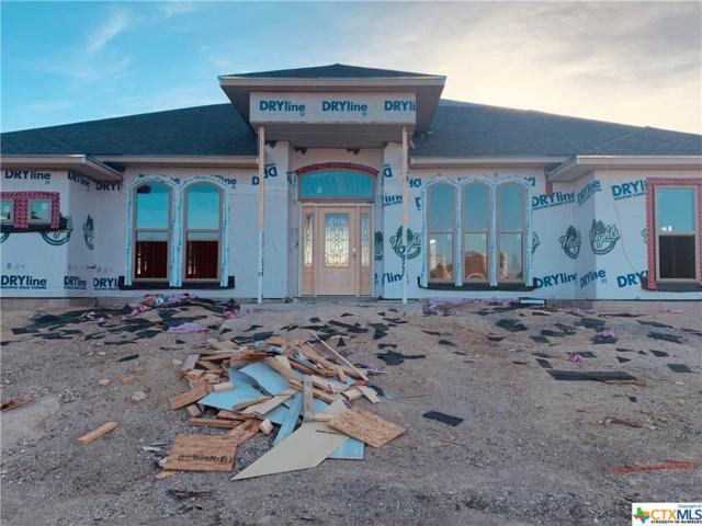 2004 Bella Vita Drive, Nolanville, TX 76559 (MLS #379461) :: RE/MAX Land & Homes