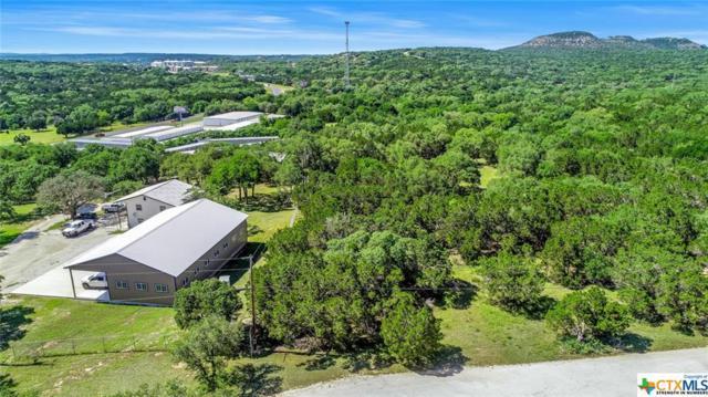 271 Pfeil High Acres Road, Canyon Lake, TX 78133 (MLS #379524) :: RE/MAX Land & Homes