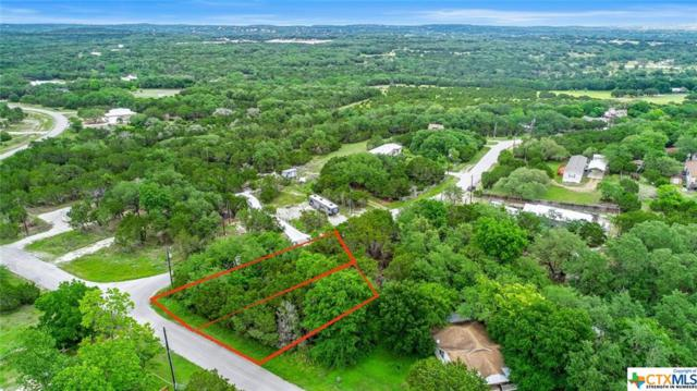 1071 Rhinestone, Canyon Lake, TX 78133 (MLS #379530) :: RE/MAX Land & Homes