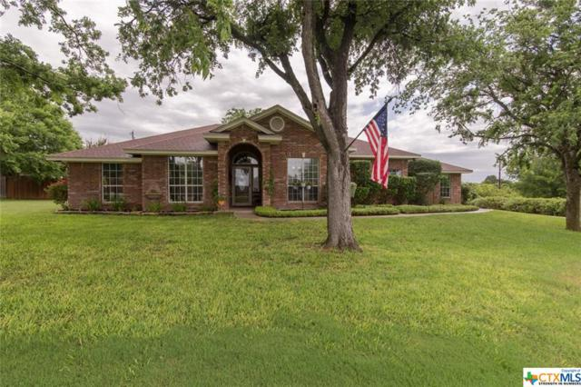 1301 Yellow Rose, Salado, TX 76571 (MLS #379535) :: The Real Estate Home Team