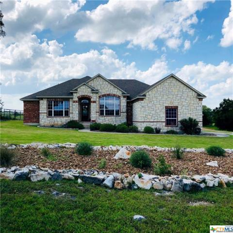 789 River Chase Way, New Braunfels, TX 78132 (MLS #379537) :: Erin Caraway Group