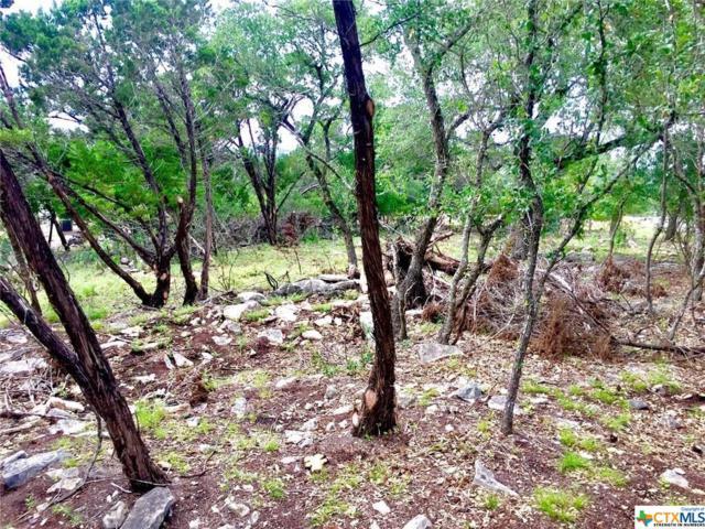 847 Shady Hollow, New Braunfels, TX 78132 (MLS #379542) :: RE/MAX Land & Homes