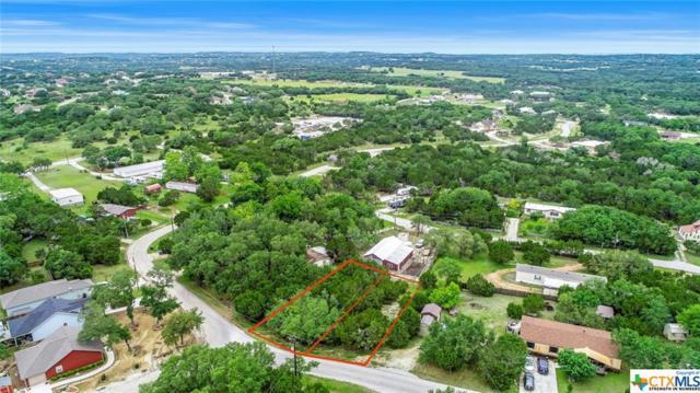 1171 Rhinestone, Canyon Lake, TX 78133 (MLS #379546) :: RE/MAX Land & Homes