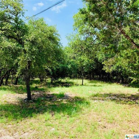 1406 Rip-Jay Circle, Canyon Lake, TX 78133 (MLS #379560) :: RE/MAX Land & Homes