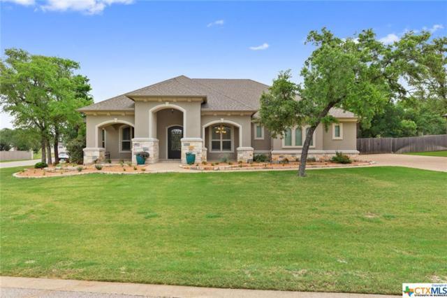 225 Winnsboro Way, Belton, TX 76513 (MLS #379566) :: RE/MAX Land & Homes