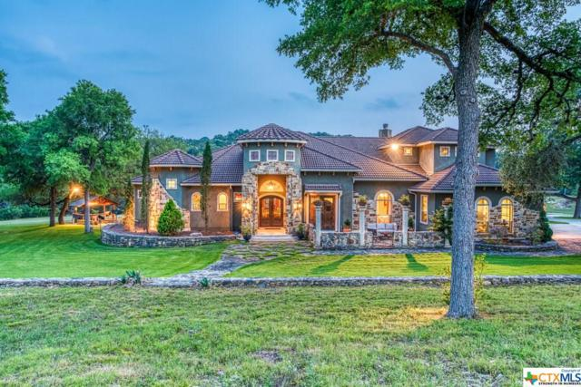 750 Sir Winston Drive, Canyon Lake, TX 78133 (MLS #379570) :: The Myles Group