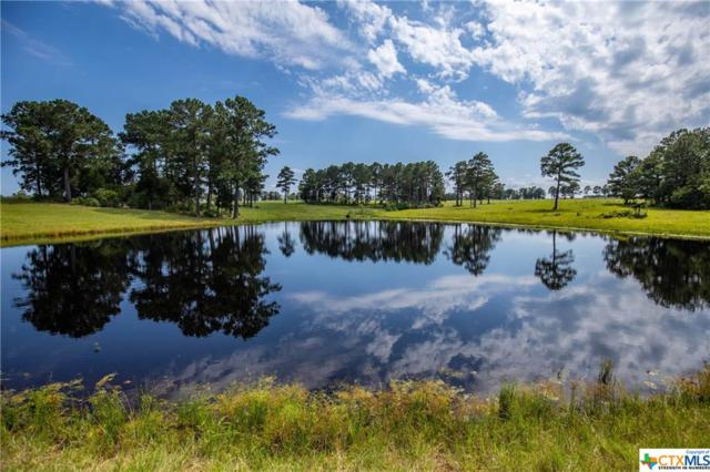 TBD Gotier Trace Road, Paige, TX 78659 (MLS #379622) :: The i35 Group