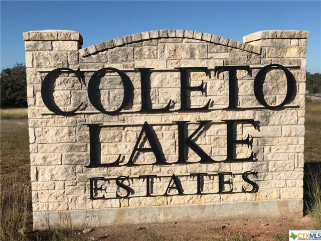 000 West Lake Trail, Victoria, TX 77905 (MLS #379631) :: Vista Real Estate