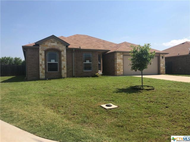 1006 Hamilton Lane, Belton, TX 76513 (MLS #379678) :: Erin Caraway Group