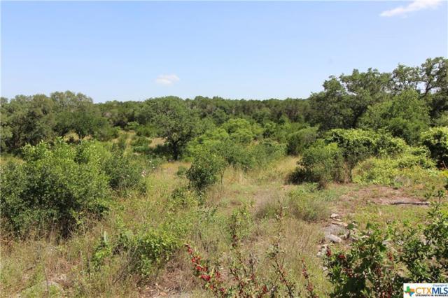 1001 Oak Grove Road, San Marcos, TX 78666 (MLS #379694) :: Vista Real Estate