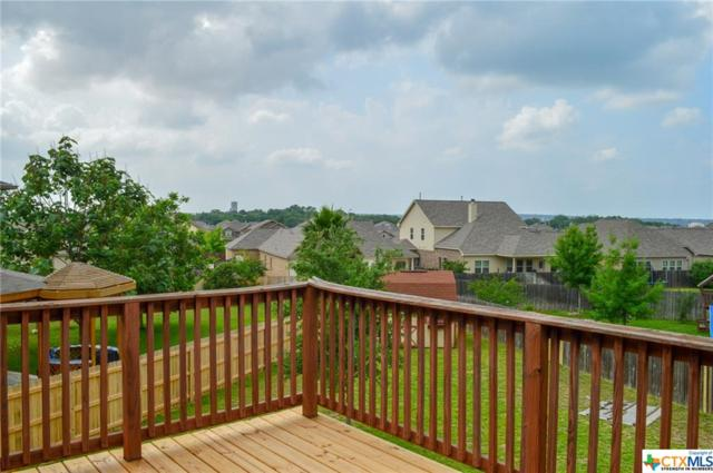 1127 Sandhill Crane, New Braunfels, TX 78130 (MLS #379758) :: Vista Real Estate
