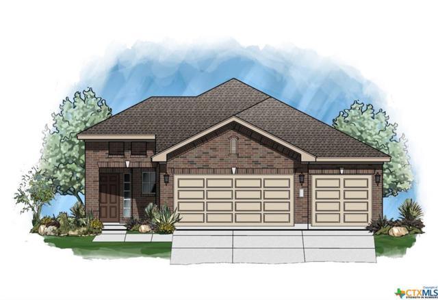 216 Durata Drive, San Marcos, TX 78666 (MLS #379788) :: Vista Real Estate