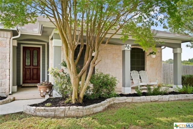 301 Quail Meadow Drive, Kyle, TX 78640 (MLS #379794) :: Vista Real Estate
