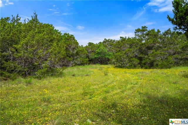 TBD Lot 765 Whitetail Drive, Spring Branch, TX 78070 (#379809) :: Realty Executives - Town & Country