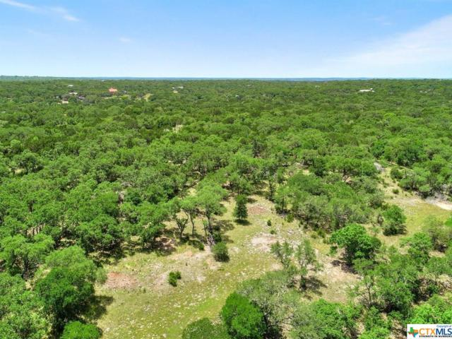 300 Windmill Cove D, Wimberley, TX 78676 (MLS #379817) :: Vista Real Estate