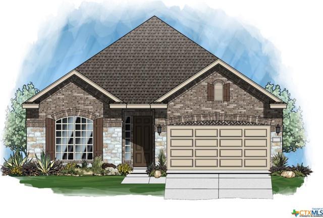 220 Durata Drive, San Marcos, TX 78666 (MLS #379822) :: Vista Real Estate