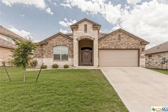 1135 Emerald Gate Drive, Temple, TX 76502 (MLS #379848) :: The Real Estate Home Team