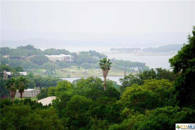1011 Thunderbolt Road, Canyon Lake, TX 78133 (#379902) :: Realty Executives - Town & Country