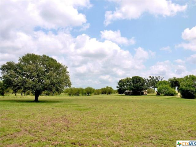 11855 Fm 1726, Goliad, TX 77963 (MLS #379904) :: The Zaplac Group
