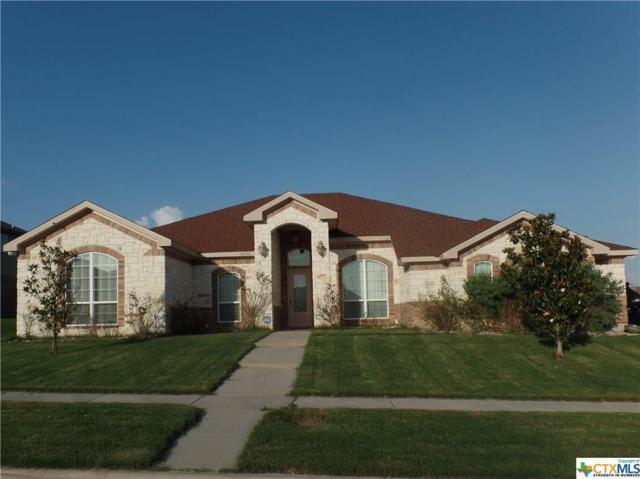 6008 Bedrock Drive, Killeen, TX 76542 (MLS #379973) :: Vista Real Estate