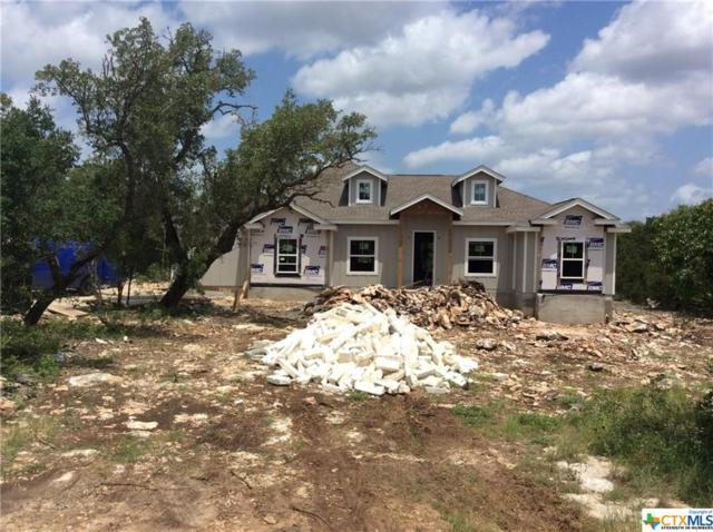 495 Hilltop Rdg, New Braunfels, TX 78132 (MLS #379978) :: Vista Real Estate
