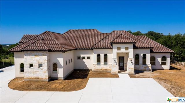 2253 Pinot Blanc, New Braunfels, TX 78132 (#380154) :: Realty Executives - Town & Country