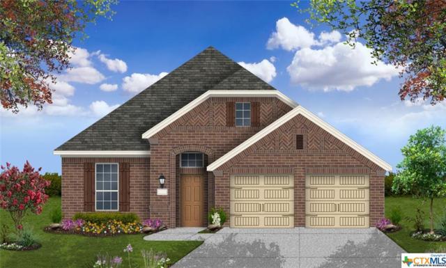212 Emerald Garden Road, San Marcos, TX 78666 (#380162) :: Realty Executives - Town & Country