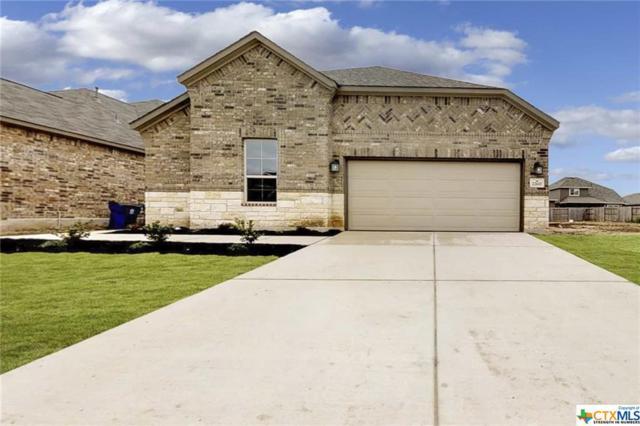 22615 Carriage Bluff, San Antonio, TX 78261 (MLS #380229) :: The i35 Group