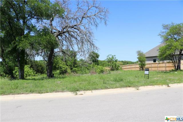2535 Bluff Circle, Belton, TX 76513 (MLS #380239) :: Erin Caraway Group