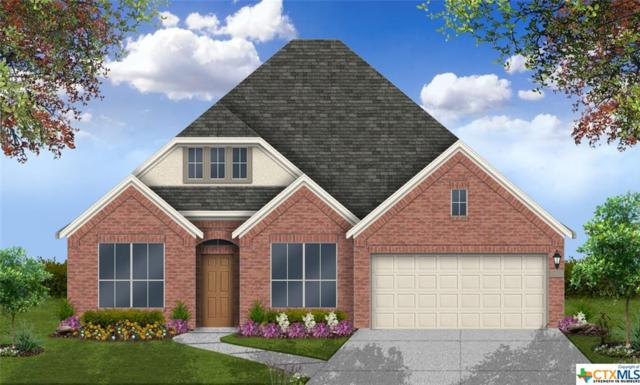 833 Academy Oaks Drive, San Marcos, TX 78666 (#380308) :: Realty Executives - Town & Country