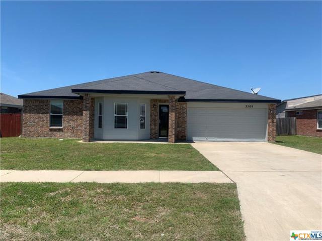 3509 Ennis Drive, Killeen, TX 76549 (MLS #380452) :: Brautigan Realty