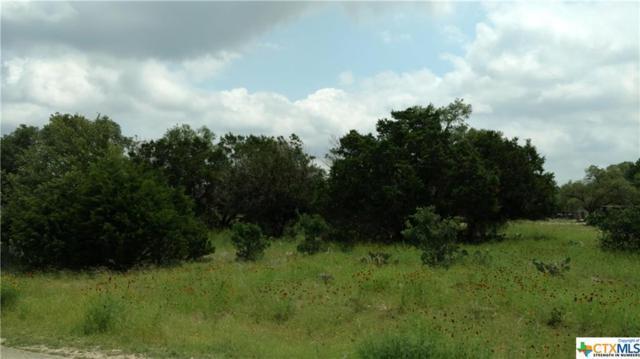 326 Rittimann Road, Spring Branch, TX 78070 (MLS #380572) :: Erin Caraway Group