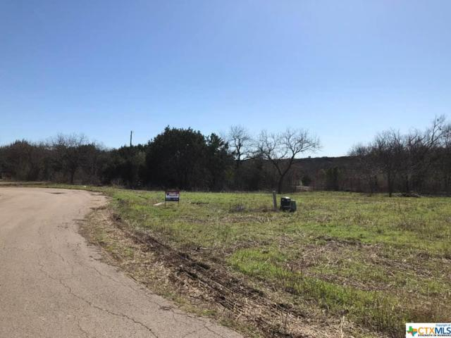 Tract 6 Nathan Lane, Belton, TX 76513 (#380642) :: Realty Executives - Town & Country