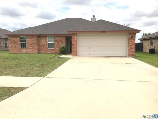 3905 Jake Spoon Drive, Killeen, TX 76549 (MLS #380744) :: The i35 Group