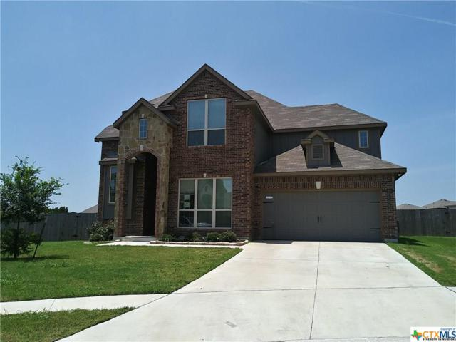 6709 Creek Land Road, Killeen, TX 76549 (#380842) :: Realty Executives - Town & Country