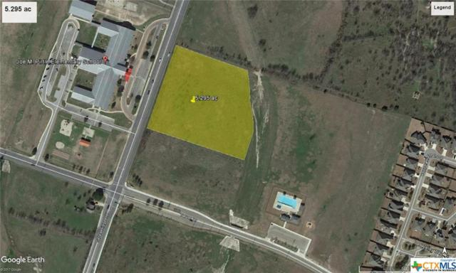 5.295 Ac On S. Pea Ridge Rd, Temple, TX 76502 (MLS #380909) :: The Graham Team