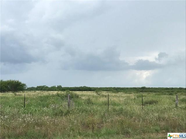 3436 Fm 953, Cuero, TX 77954 (MLS #380978) :: Kopecky Group at RE/MAX Land & Homes