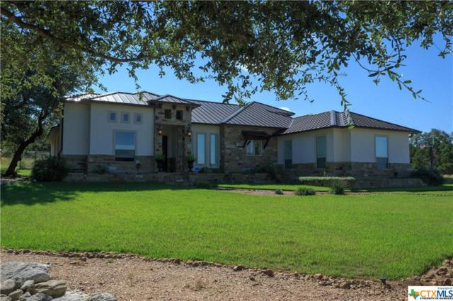 335 Lookout Ridge, New Braunfels, TX 78132 (#381072) :: Realty Executives - Town & Country