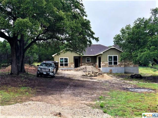 229 Breeze Point, Fischer, TX 78623 (MLS #381109) :: The i35 Group