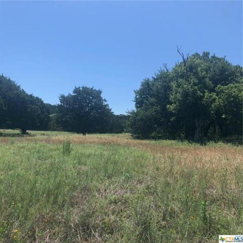 12025 E Knights Way, Belton, TX 76513 (MLS #381176) :: Vista Real Estate