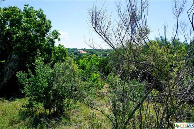 1040 Erika Crest, Canyon Lake, TX 78133 (MLS #381305) :: Vista Real Estate