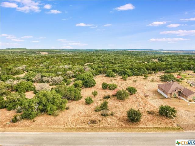 661 Cambridge Drive, New Braunfels, TX 78132 (MLS #381530) :: Vista Real Estate