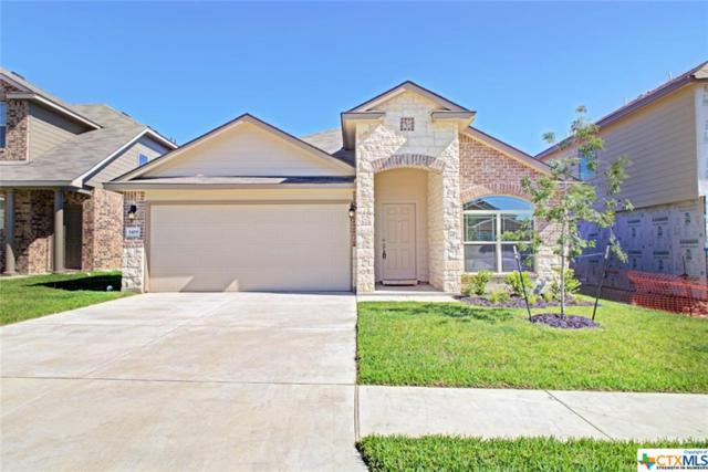 3419 Aubree Katherine Drive, Killeen, TX 76542 (MLS #381634) :: The Zaplac Group