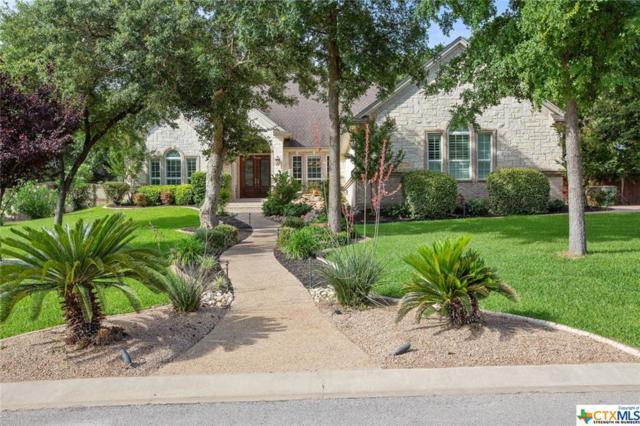 445 Eagle Landing Drive, Belton, TX 76513 (MLS #381657) :: Brautigan Realty