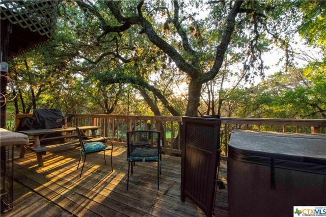 1260 Lakeside Drive, Canyon Lake, TX 78133 (MLS #381670) :: Erin Caraway Group