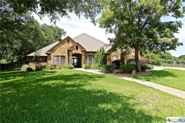 1320 Overlook Ridge Drive, Belton, TX 76513 (MLS #381721) :: Brautigan Realty