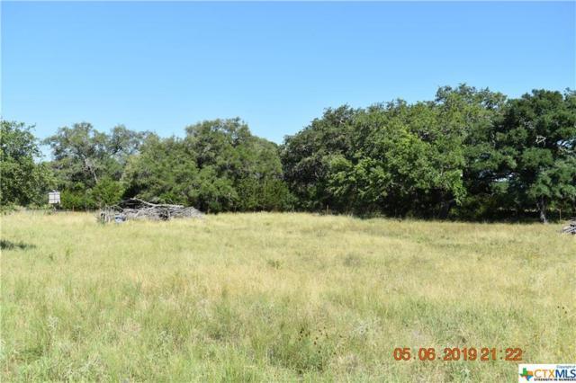 1750 Hueco Springs Loop Road, New Braunfels, TX 78132 (#381731) :: Realty Executives - Town & Country