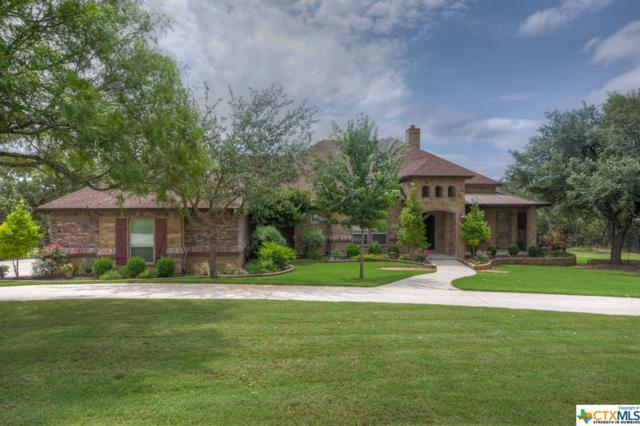 1239 Indian Ridge, New Braunfels, TX 78132 (#381736) :: Realty Executives - Town & Country
