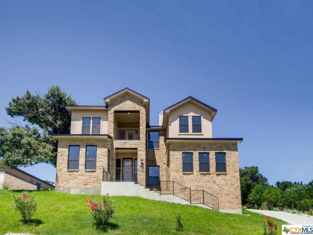 18404 Lakeland Drive, Point Venture, TX 78645 (MLS #381749) :: The Graham Team
