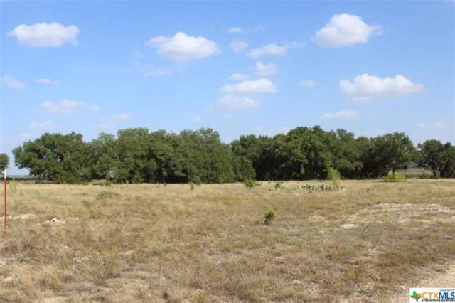 6903-6 Tbd Cr 2001 - Tract 6, Lampasas, TX 76550 (MLS #381835) :: The Graham Team